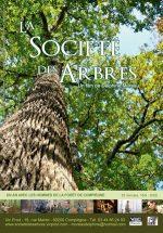 La société des arbres